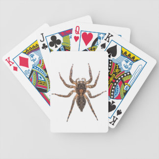 Female Pantropical Jumping Spider Bicycle Playing Cards