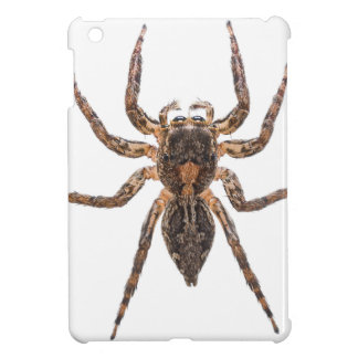 Female Pantropical Jumping Spider iPad Mini Cover
