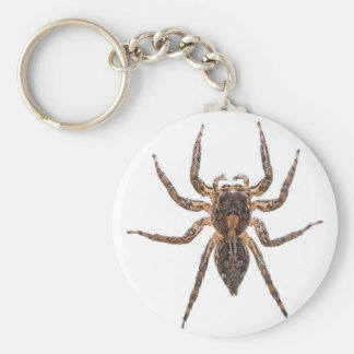 Female Pantropical Jumping Spider Key Ring