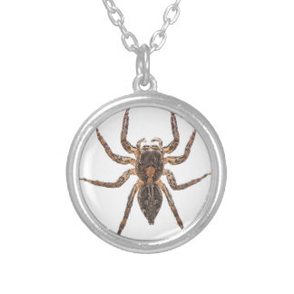 Female Pantropical Jumping Spider Silver Plated Necklace