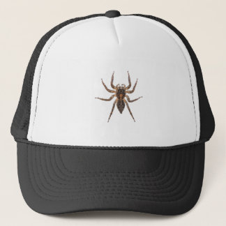 Female Pantropical Jumping Spider Trucker Hat