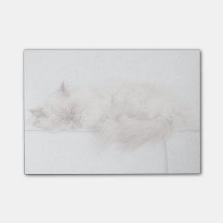 Female Persian Cat Post-it® Notes
