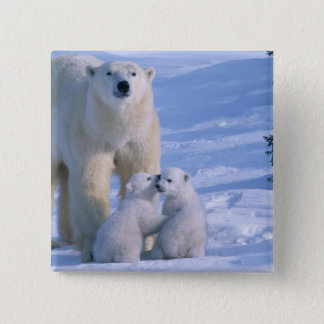 Female Polar Bear Standing with 2 Cubs at her 15 Cm Square Badge