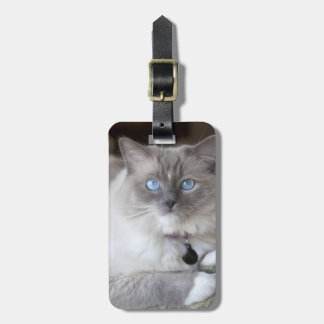 Female Ragdoll Cat Bag Tag