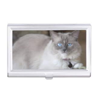 Female Ragdoll Cat Business Card Holder