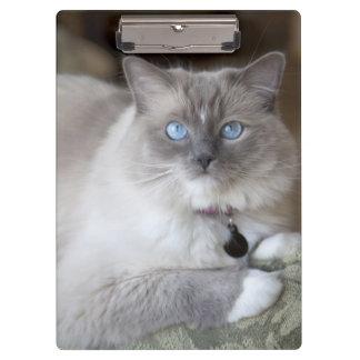 Female Ragdoll Cat Clipboards
