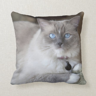 Female Ragdoll Cat Cushion