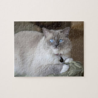 Female Ragdoll Cat Jigsaw Puzzle