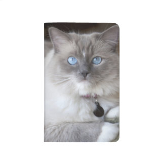 Female Ragdoll Cat Journal