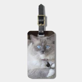 Female Ragdoll Cat Luggage Tag
