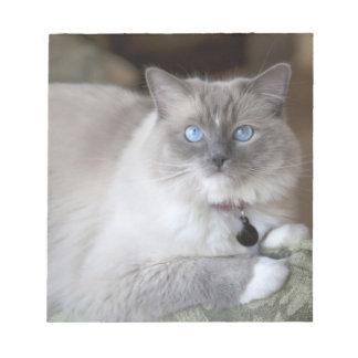 Female Ragdoll Cat Notepads