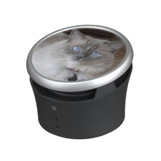 Female Ragdoll Cat Speaker