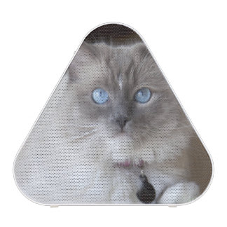 Female Ragdoll Cat Bluetooth Speaker