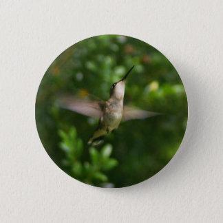 Female Ruby Throat Hummingbird Button