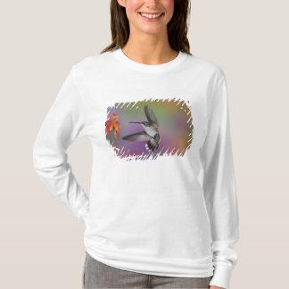 Female Ruby Throated Hummingbird in flight, 2 T-Shirt