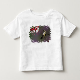 Female Ruby throated Hummingbird in flight. Toddler T-Shirt