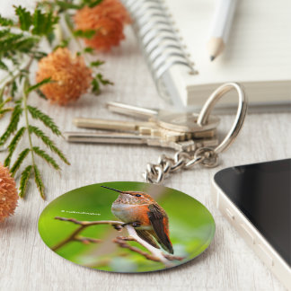 Female Rufous Hummingbird on the Plum Tree Basic Round Button Key Ring