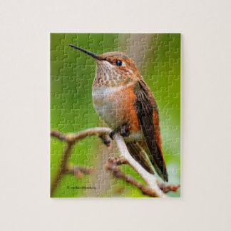 Female Rufous Hummingbird on the Plum Tree Jigsaw Puzzle