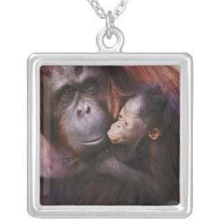 Female Sumatran Orangutan with baby, Pongo Silver Plated Necklace