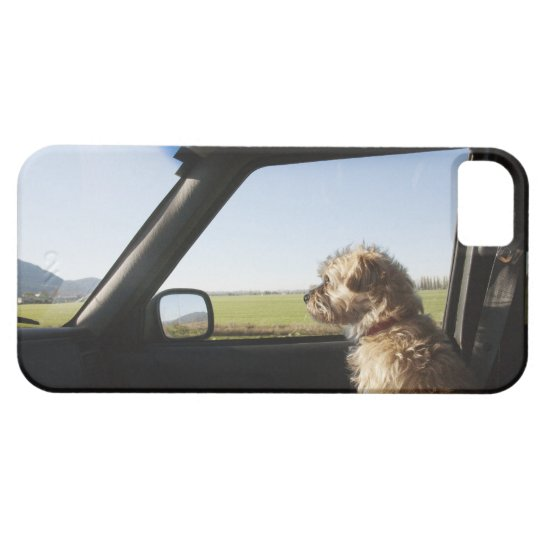 Female Terrier X sitting if front seat of iPhone 5 Case