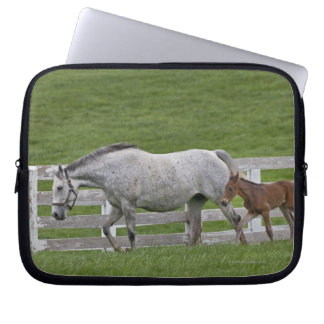 Female thoroughbred and young foal laptop sleeve
