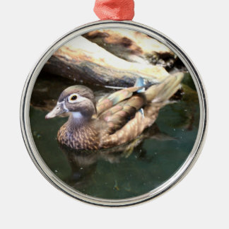 Female Wood Duck Christmas Ornament