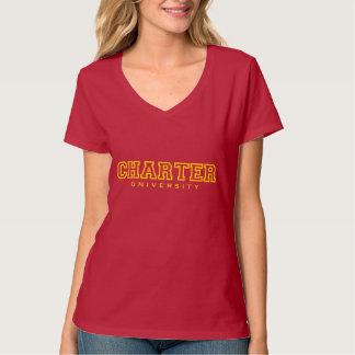 Feminine Hanes Nano V-Neck T-Shirt