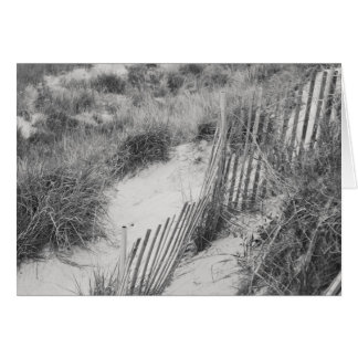 """Fence and Dunes"" collection Card"