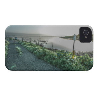 Fence and Slough Blackberry Bold Case