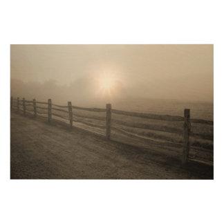 Fence and Sunburst Through Fog near Sharon Wood Print