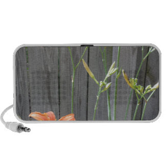 Fence with Lillies Mini Speakers