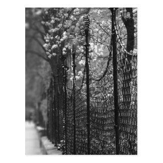 Fenced garden Postcard