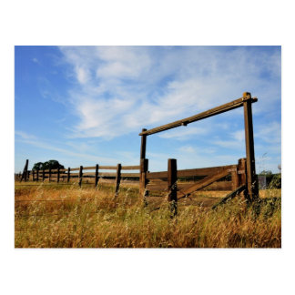 Fences in Field Postcard