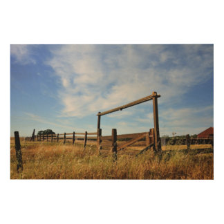 Fences in Field Wood Wall Art