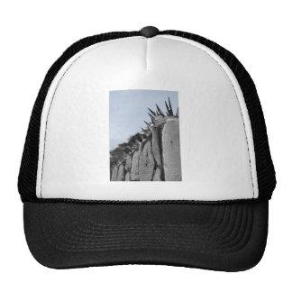 fences white text cap