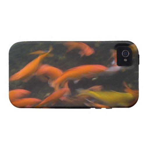 Feng Shui believe koi fish bring good luck. iPhone 4/4S Covers
