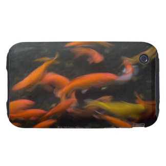 Feng Shui believe koi fish bring good luck. iPhone 3 Tough Case