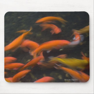 Feng Shui believe koi fish bring good luck. Mouse Mat