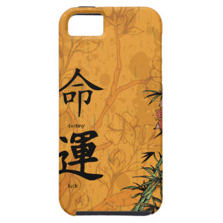 Feng Shui Destiny & Luck iPhone 5 Cases