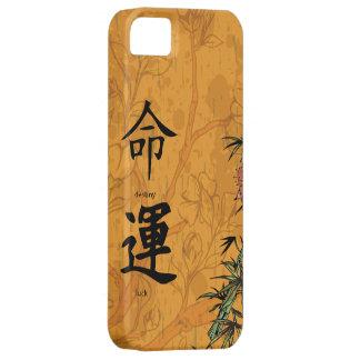 Feng Shui Destiny & Luck iPhone 5 Case
