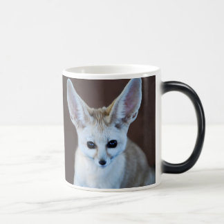 Fennec fox magic mug