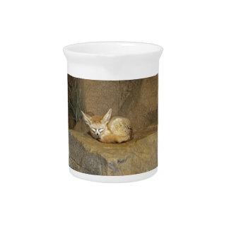 fennec fox pitcher