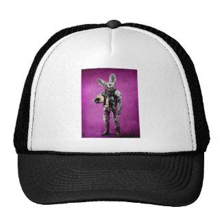 fennec the captain purple cap