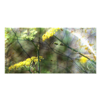 Fennel Photo Card Template