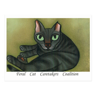 Feral Cat NURTURE MESSAGE POSTCARD