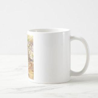 Feral Cats Big Island Hawaii Coffee Mugs
