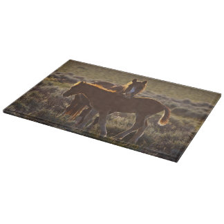 Feral Horse Equus caballus) adult and colt in Cutting Board