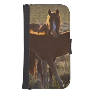 Feral Horse Equus caballus) adult and colt in Samsung S4 Wallet Case