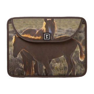 Feral Horse Equus caballus) adult and colt in Sleeve For MacBook Pro