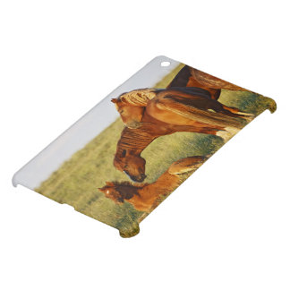 Feral Horse Equus caballus) adult smelling Cover For The iPad Mini